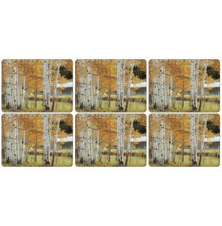 Birch Beauty Bordsunderlägg 6-pack