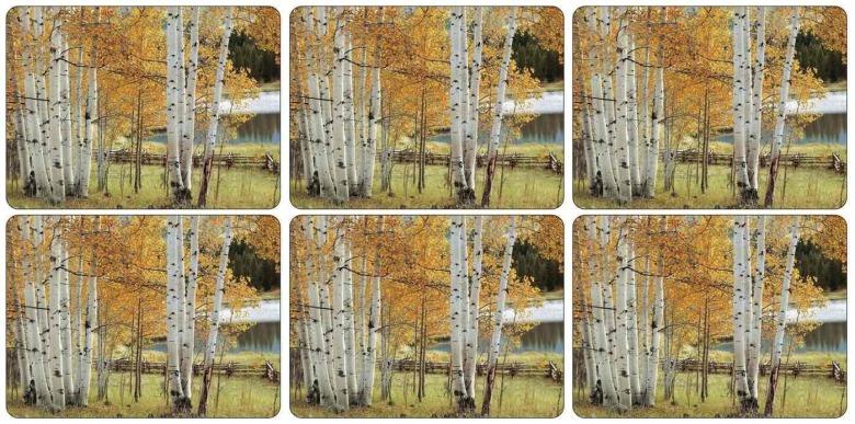 Birch Beauty Bordsunderlägg Small 6-pack