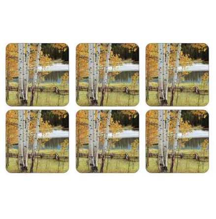 Birch Beauty Glasunderlägg 6-pack