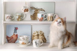 Wrendale Designs Kaffekopp och Fat (Rabbit)