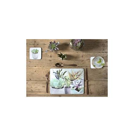 Succulents Bordsunderlägg 4-pack