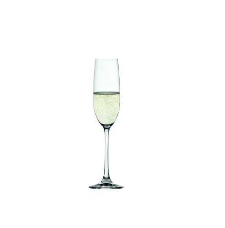 Salute Champagneglas 4-pack